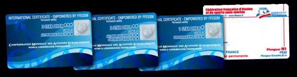 Carte-N1N2N3-CMAS-FFESSM